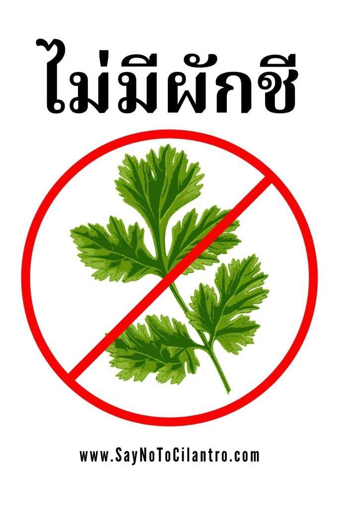 "How to say ""No Cilantro"" in Thai [Thailand]"